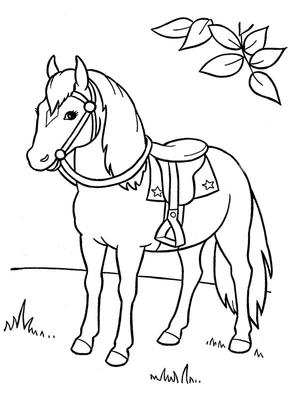 ausmalbilder pferde  pferd 5 ausmalbilder pferde  pferde
